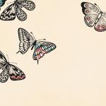 Nye bøger fra L&R maj-juni 2015