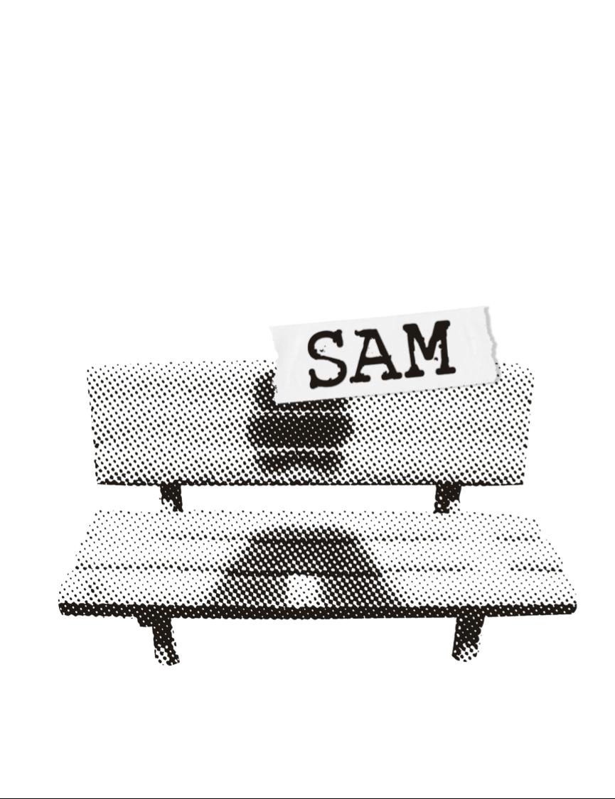 bb-sam