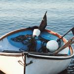 Mikkel Karstad: Tag ud og fisk