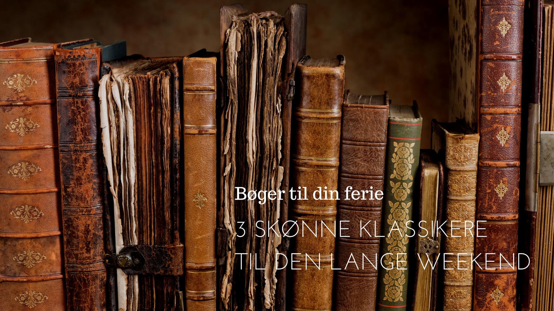 Bøger til din ferie (2)