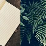 Mogens Blom: Det skal jeg læse i min sommerferie