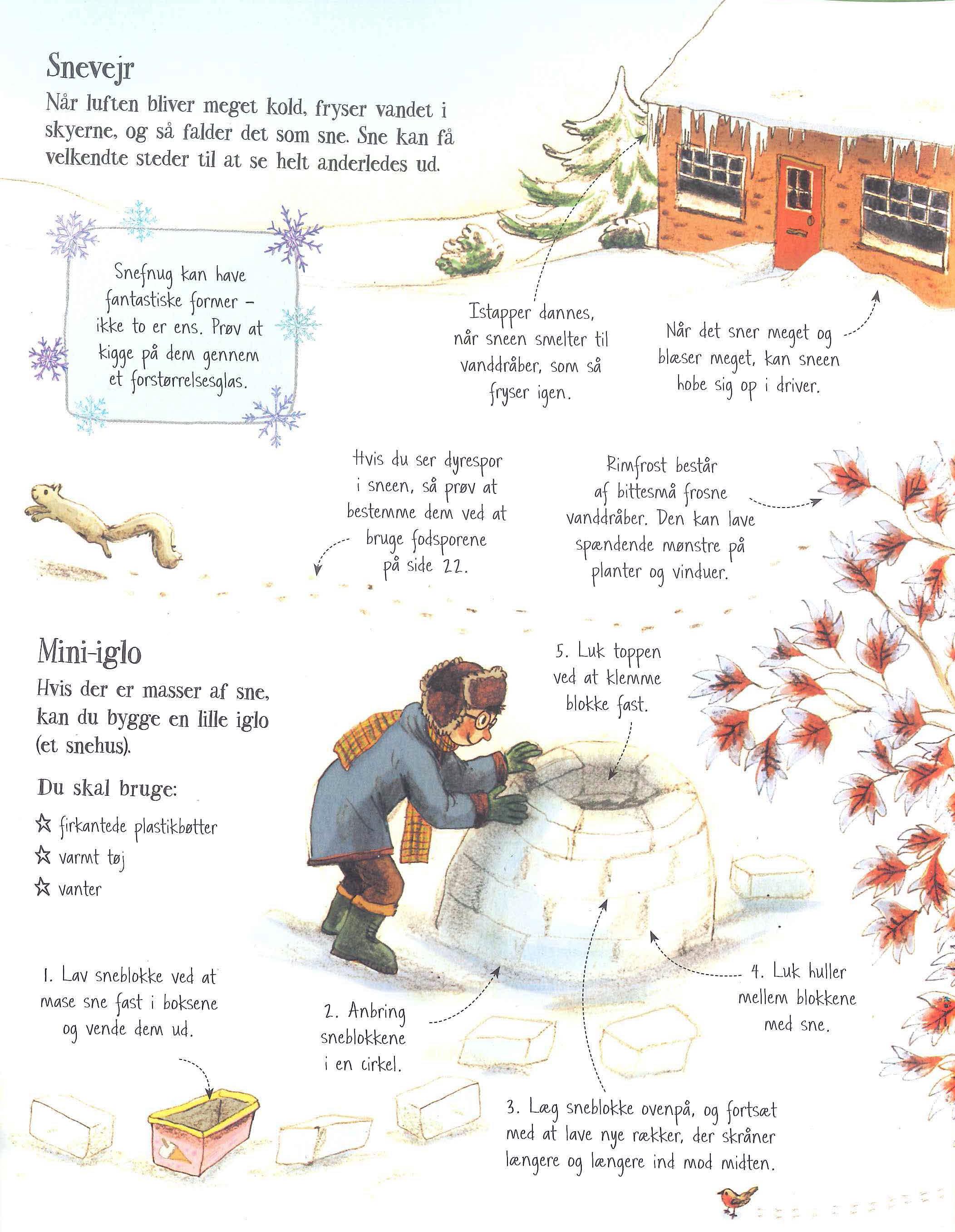 Min bog om friluftsliv – snevejr
