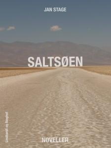 Saltsøen_2