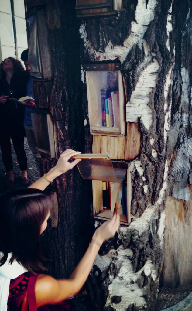 bogtræet