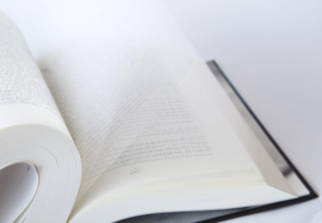 Malene Sølvsten, Ravnenes hvisken, Ravnenes hvisken bog 2, fantasy, fantasybøger