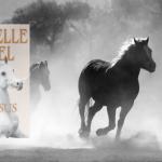 Læs om Danielle Steels historieske familiedrama Pegasus