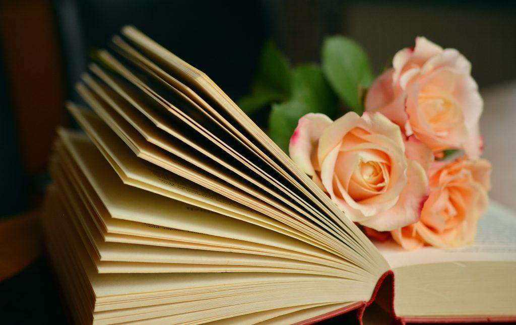 kærlighedsromaner lovebooks
