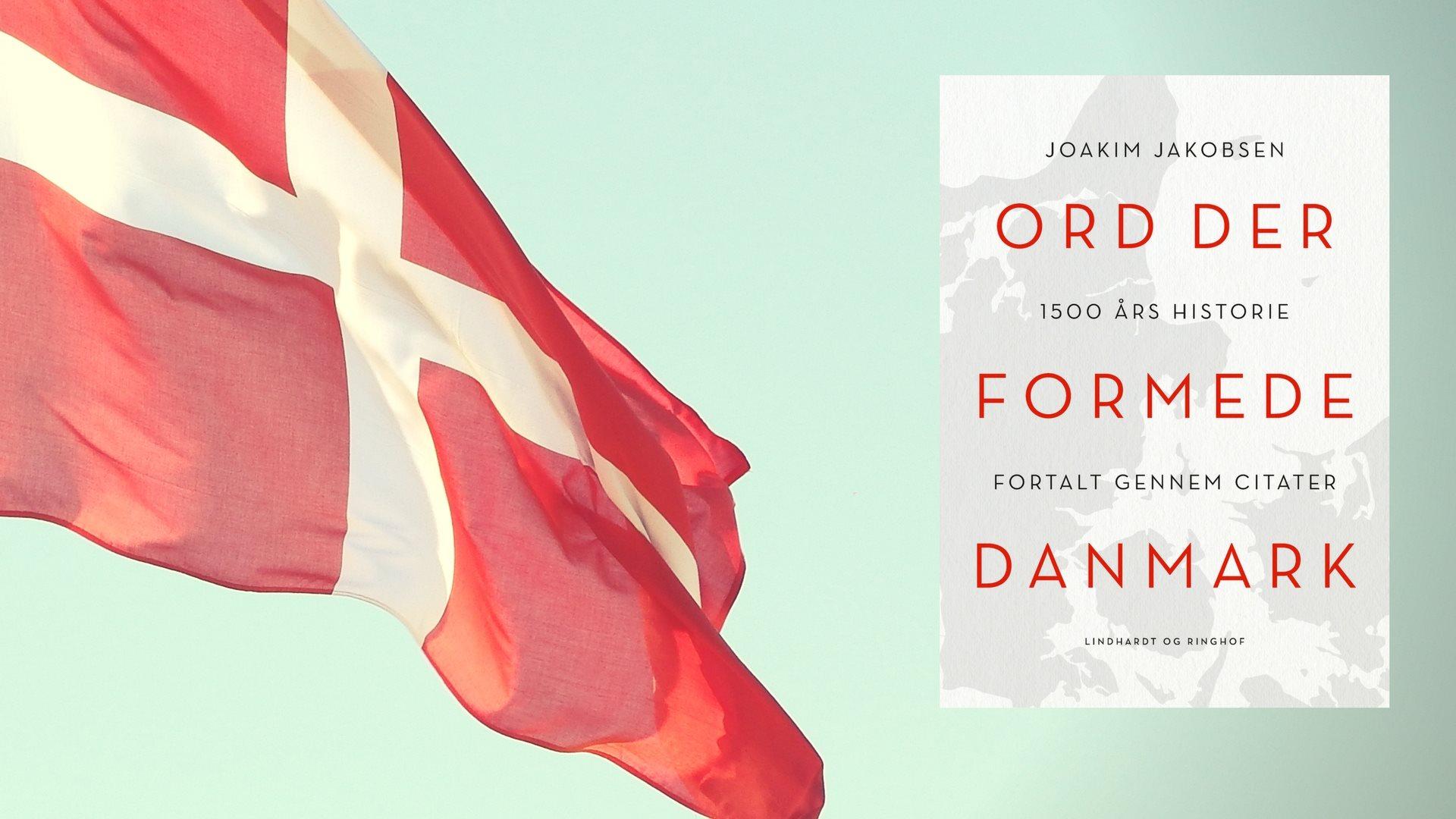 soldater citater Ord der formede Danmark   soldater citater