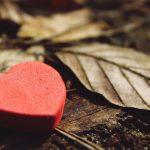 12 medrivende kærlighedshistorier på e-bog
