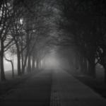 10 vildt gode krimier til de mørke aftener