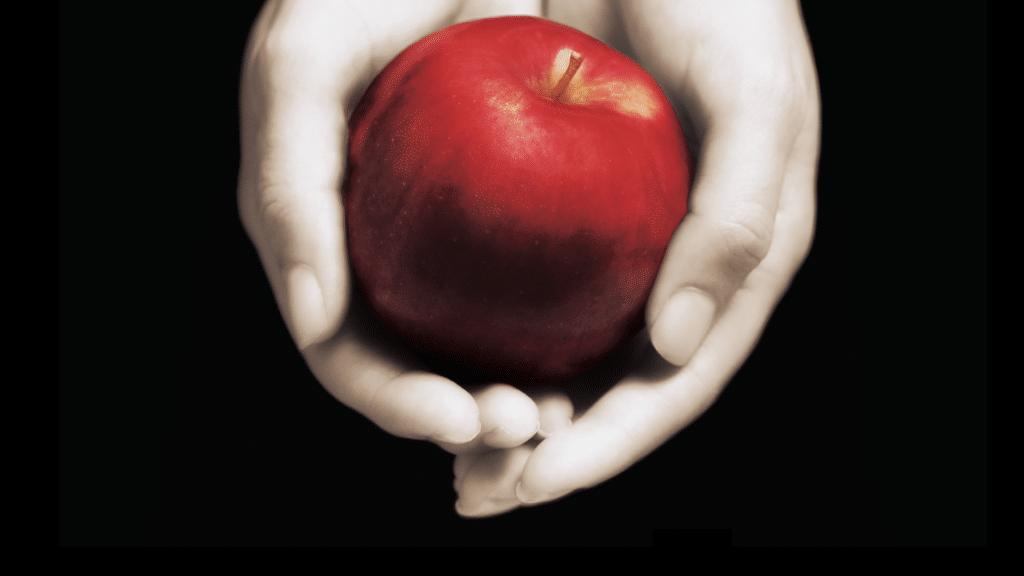 Stephenie Meyer, Twilight, Twilight sagaen, YA, young adult, vampyr, kærlighed, ungdomsbog
