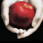 Ny udgave af én af de helt store YA-klassikere: Twilight er tilbage!